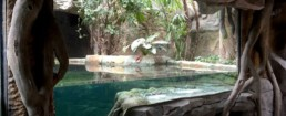 kago hammerschmidt zoo chester 10 945x384