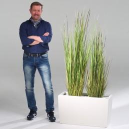 kago hammerschmidt Pflanzenarrangement Bambusgras