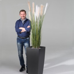 kago hammerschmidt Pflanzenarrangement Reed Grass 150