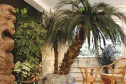 kago hammerschmidt palmen baum 11