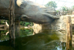 kago hammerschmidt zoo leipzig 03