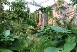 kago hammerschmidt zoo leipzig 10