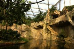 kago hammerschmidt zoo leipzig 12