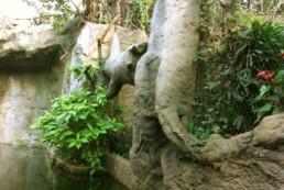 kago hammerschmidt zoo leipzig 13