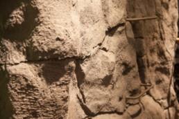 kago hammerschmidt ladenbau 17